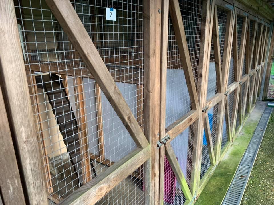 Greendale Farm Cattery